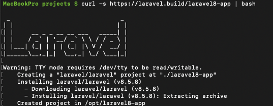 Laravel8 Command Line view