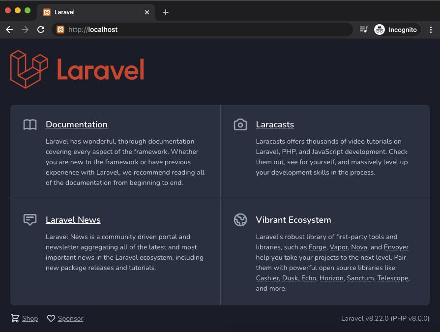 Laravel 8 starter Home